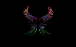 COLOURFULL WINGS Wallpaper by jeshans