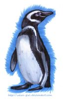Just Pinguin. by VeIra-girl
