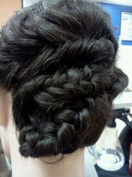 Fishtail and French Braid Updo by Ne0Geisha