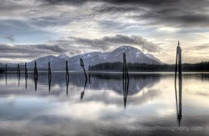 South Tongass II by Muskeg