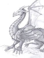 Dragon again by evolra