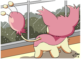 Poor Skitty by pichu90