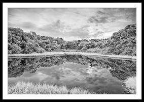The Reflection in IR by Jase036