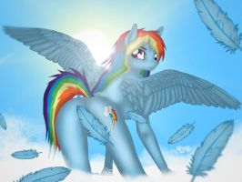 Equestria Snaps 1: Dash in the Clouds by SquareSausage