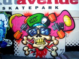 Skate and or Die by RietOne