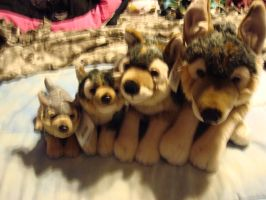 Leosco plush wolf collection by Vesperwolfy87