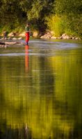 Fishing on the Olt river by JoeGP