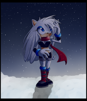 SSS - A Winter Stroll by Snowify