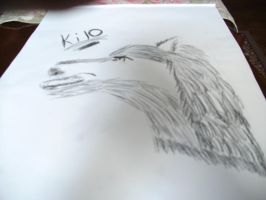 Kilo the wolf by johnny1296