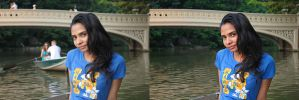 Chandrika-central park before-after Final cut by GinzoMike