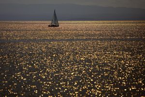 The Sea of Gold by secondclaw
