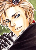 APH Denmark ACEO by shiropon