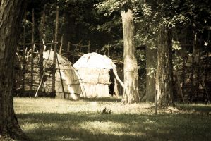 Wickiups at Fort Ancient by cedarlili