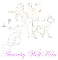 Random sketchings of a wolf by AnarchyWolfKira
