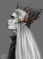 The Elvenking by Momoreo