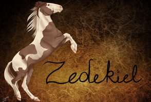 BHS Zedekiel #006SS by Cougar28