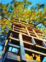 Our Treehouse Built by My Husband {Photo 18} by Empress-XZarrethTKon