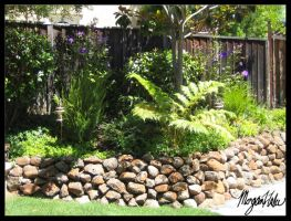 My backyard by MLGn00beater