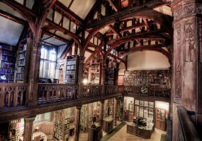 Gladstone library by Akonyte