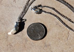 Soldered Coyote Tooth Necklace by kittykat01
