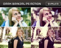 DARK BRINJAL PHOTOSHOP ACTION 0031 by symufa