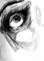 Charcoal Eyeball by ma6