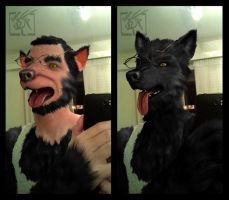 Werewolf Sequence - Manip Commission by Toledo-the-Horse