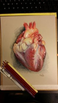 Photorealistic Heart by BunnyFromMars