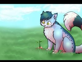 let it grow by jenny96ist
