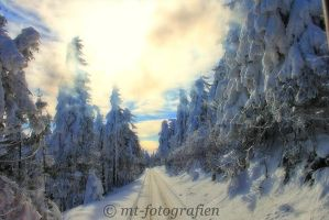 winter wonderland in the resin 4 by MT-Photografien