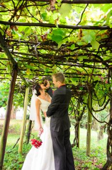 Grape Vines by EvanXethTideswell