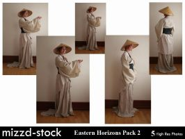 Eastern Horizons Pack 2 by mizzd-stock
