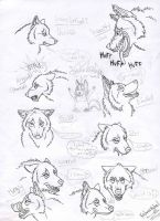 Wolf Facial Expressions Prt 2 by Mongrelistic