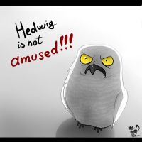 Hedwig is not amused! by SquatinaCaprium