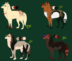 Point adopts by Asleri