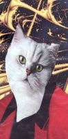 Cat-tain of Industry Bookmark by Dreamerzina