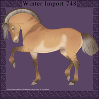 Nordanner Winter Import 748 by DemiWolfe