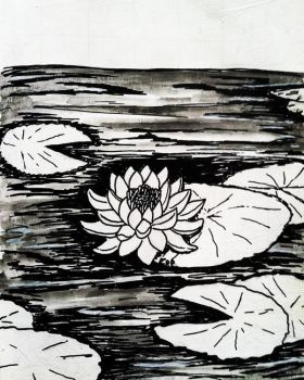 Waterlily in a Lilypond by Raikua