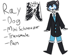 Ray Fursona Original Concept by IWSTW