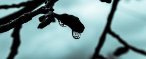 Reflection in the drop by Ich0