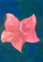 Bookcover - Pink Flower by Elabeth