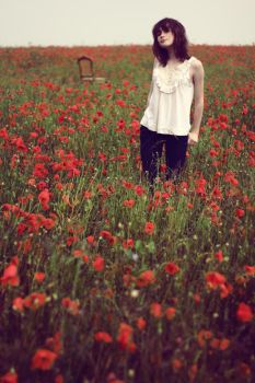 Seasoning of Poppies by xessencex