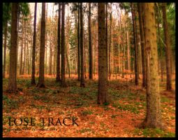 Lose Track by expressive87