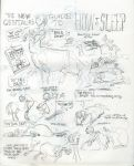 The New Centaur's Guide To How To Sleep by LiimLsan