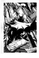 Batman by darkrobin78
