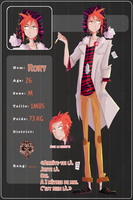 AP Nergens : Rory~ by DICE-Shimi