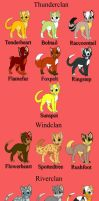Warrior Cats OCs by AquaAlchemist7