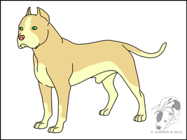Pit Bull Adopt - CLOSED by Smigolson