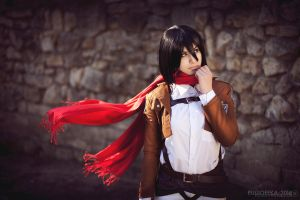 Mikasa Ackerman - Soldier of Humanity by GarnetTilAlexandros