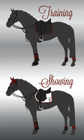 SdC Show Jumping Tack by thevostrikova